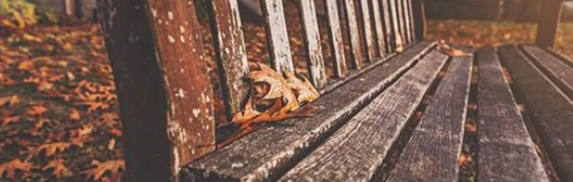 Fall Bench with autumn leaves