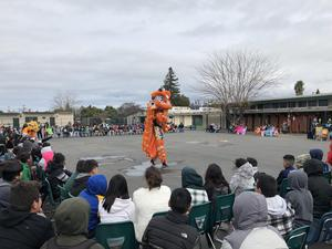 Lion stands up tall during the lion dance.