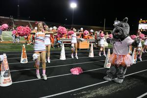 Cheerleaders leading cheer, Bulldog mascot dancing