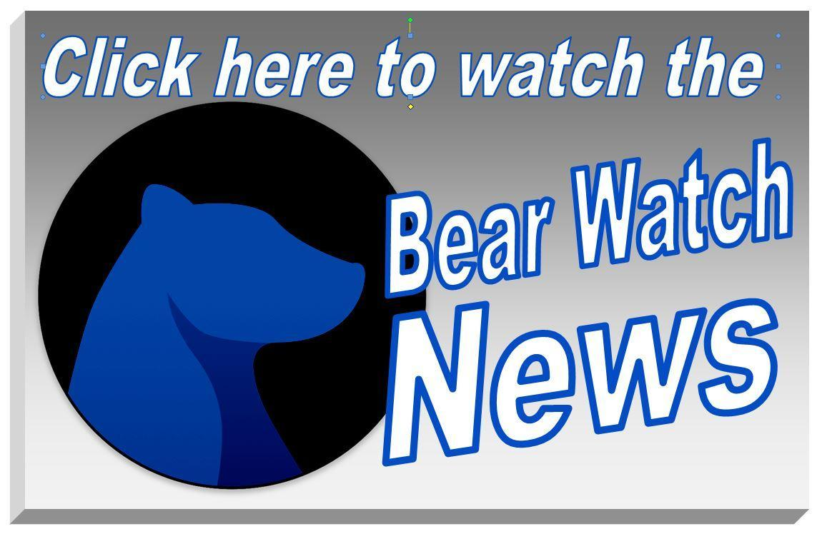 Bear Watch News Icon
