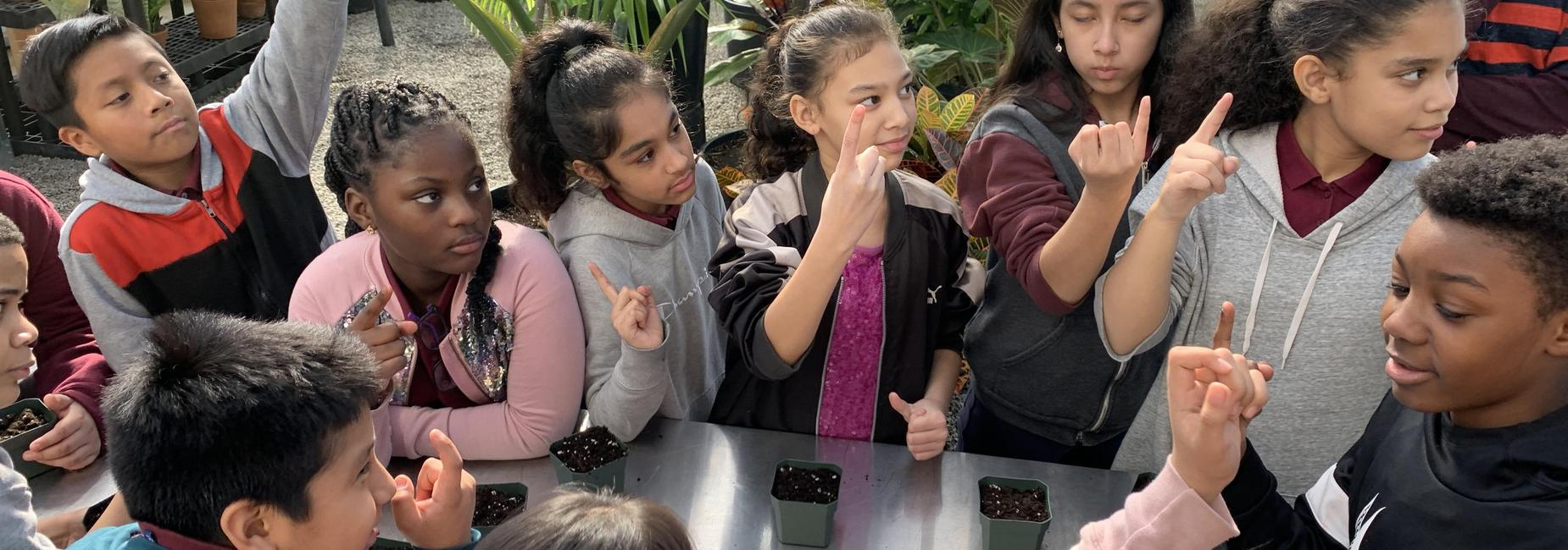 5th grade students learn to plant a pea seed