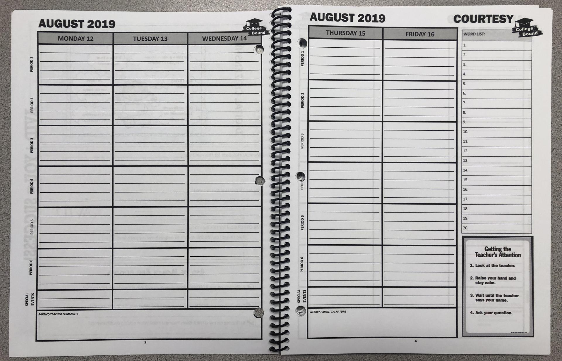 Daily planner pages.