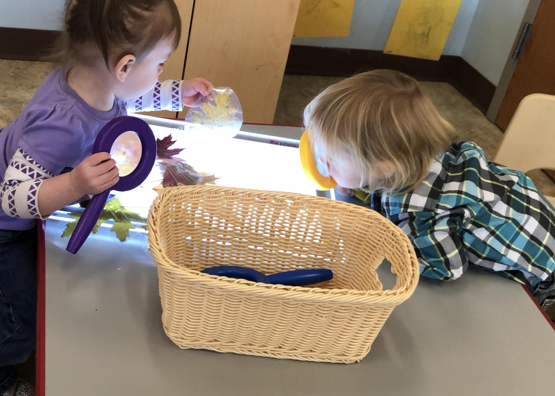 kids doing science with leaves