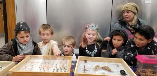 At in U of I Insect Museum