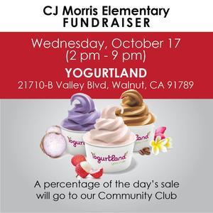 yogurtland-01-01-01.jpg
