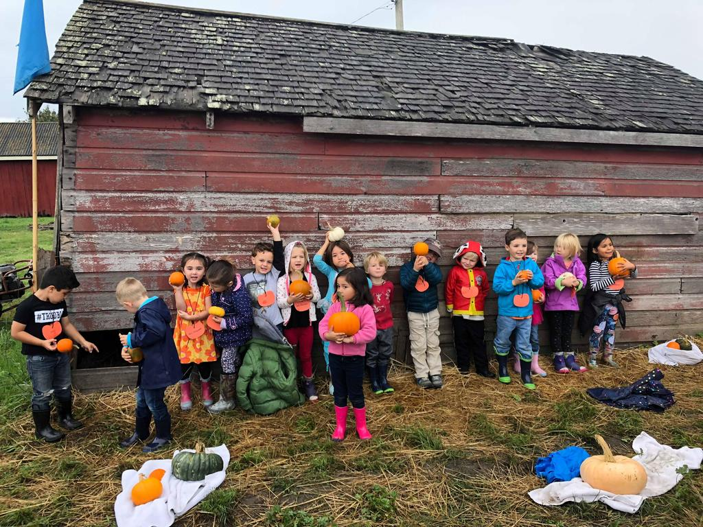 A group of children standing in front of a barn, each holding their own pumpkin