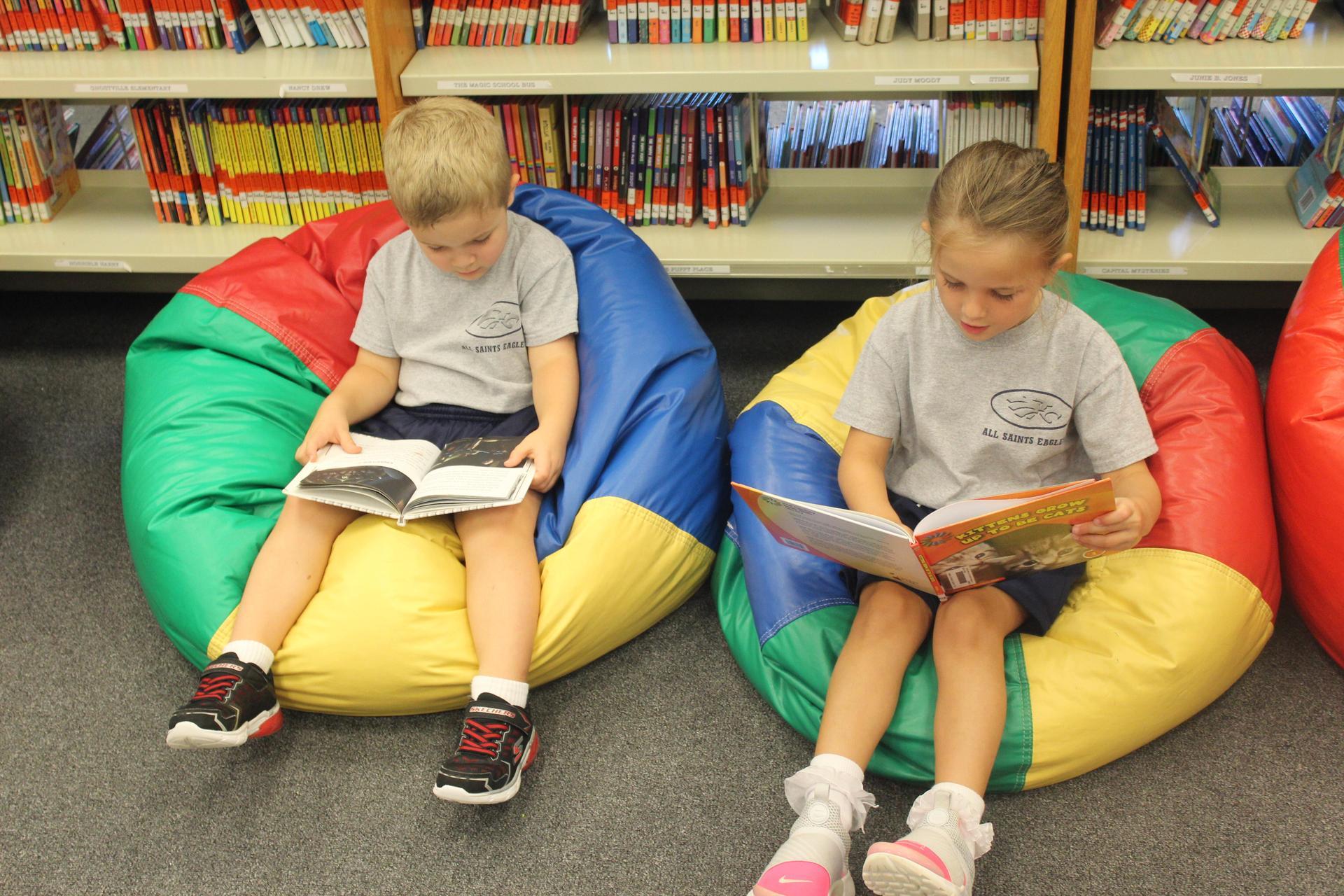 Reading in the Media Center