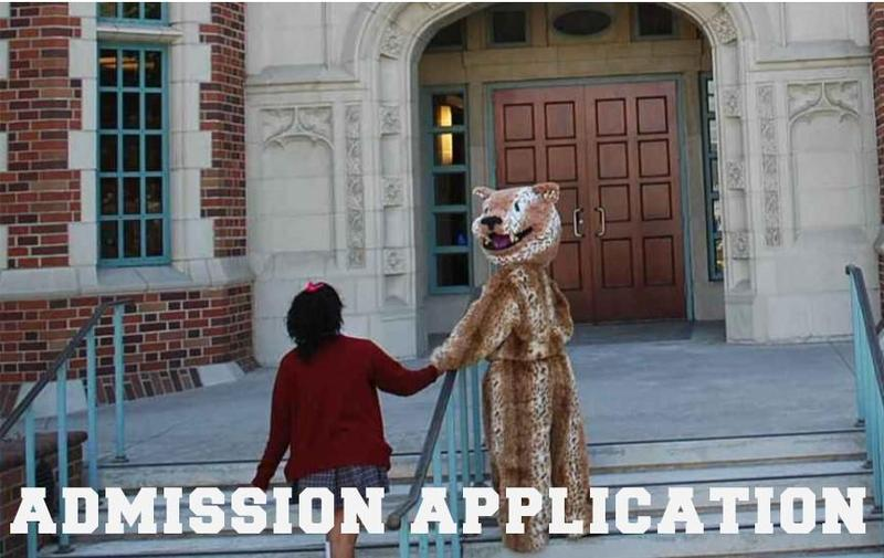 Stay on Track with the Admission Process Featured Photo