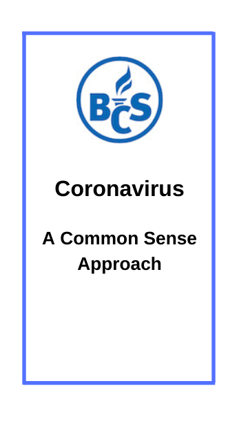 A common sense approach to Coronavirus