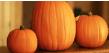 Uncut pumpkins needed...