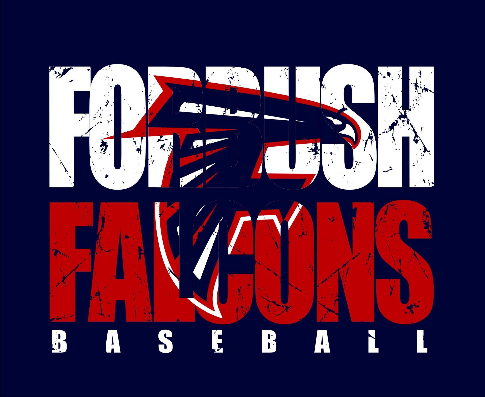 2018 2019 Falcons Baseball Baseball Forbush High