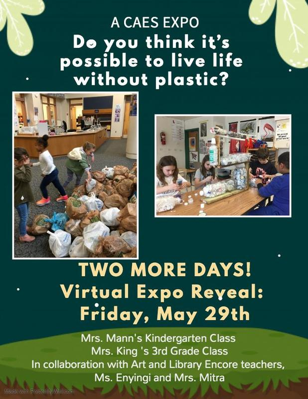 CAES Recycle Expo Flyer