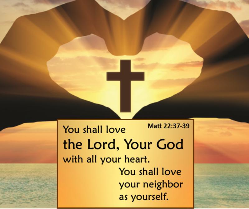 Stewardship Renewal Form Thumbnail Image