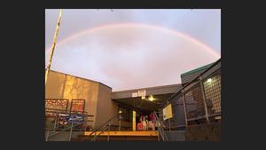 Marin Rainbow