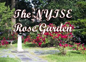 The NYISE Rose Garden