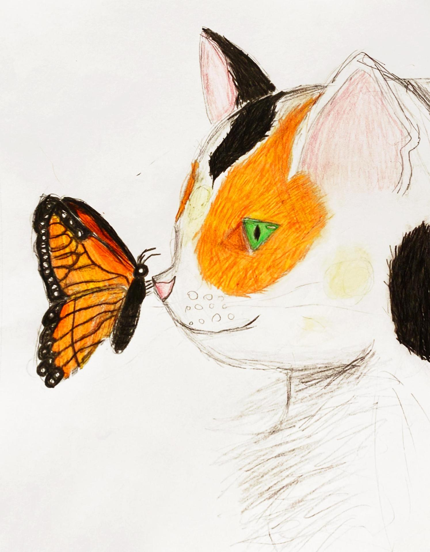 A fifth grader's super detailed drawing of a butterfly on a cat's nose