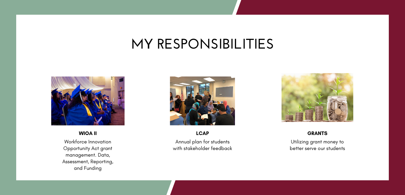 My Responsibilites- WIOA, LCAP, Grants