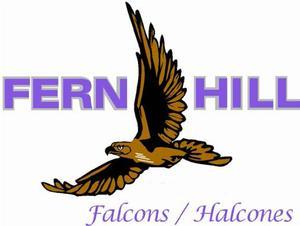 Fern Hill Falcon Logo