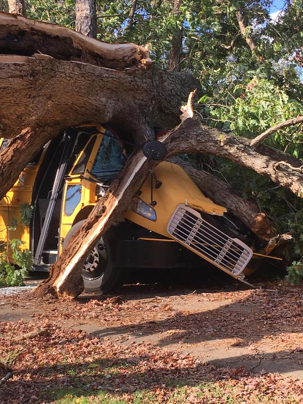 DHS School Bus Crushed by Tree During Storm