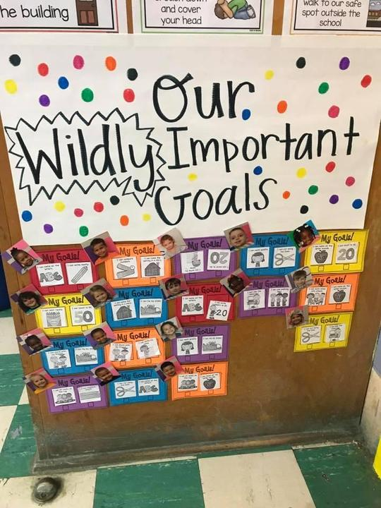Wildy Important Goals sign