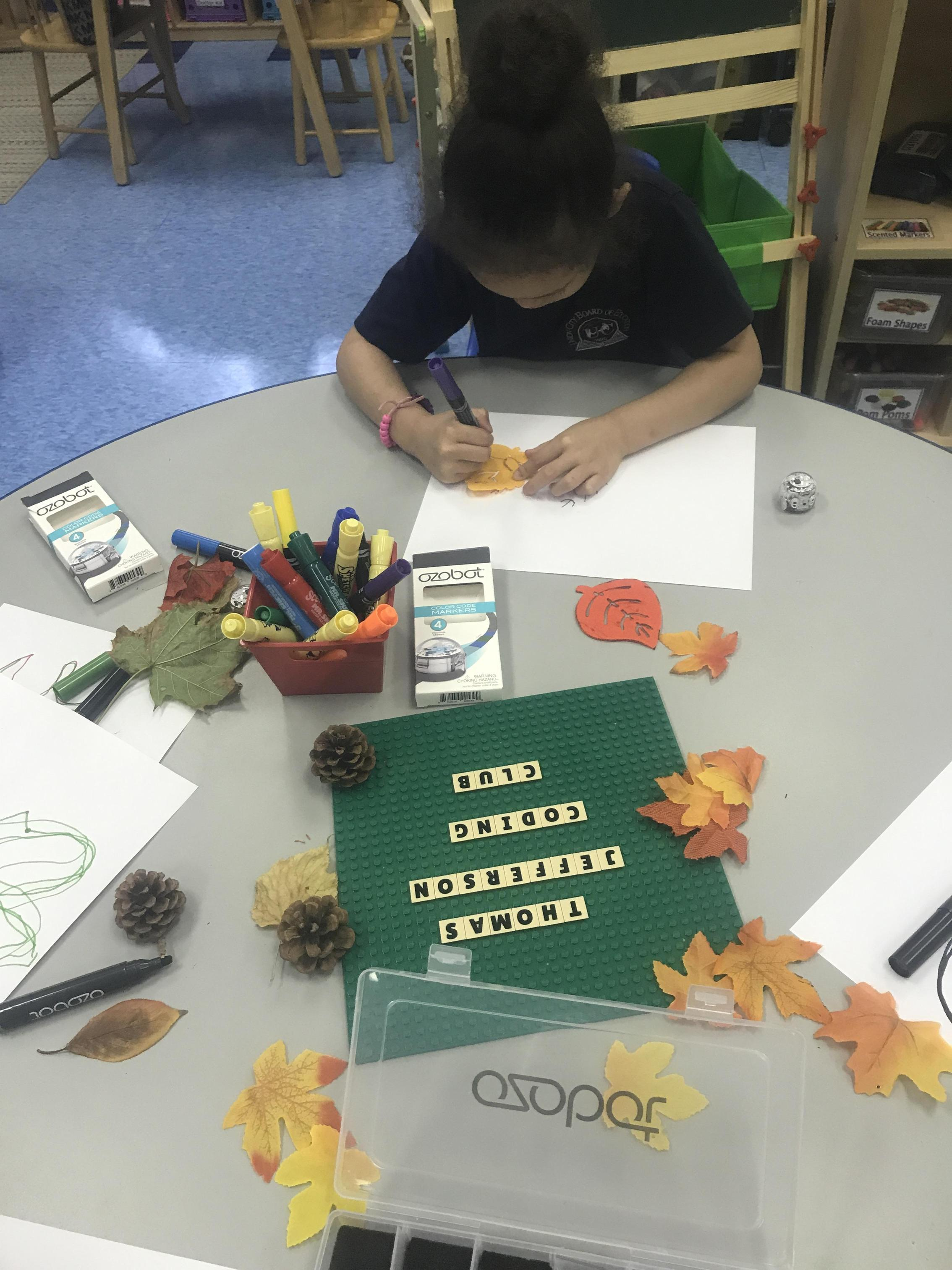 students tracing leaves
