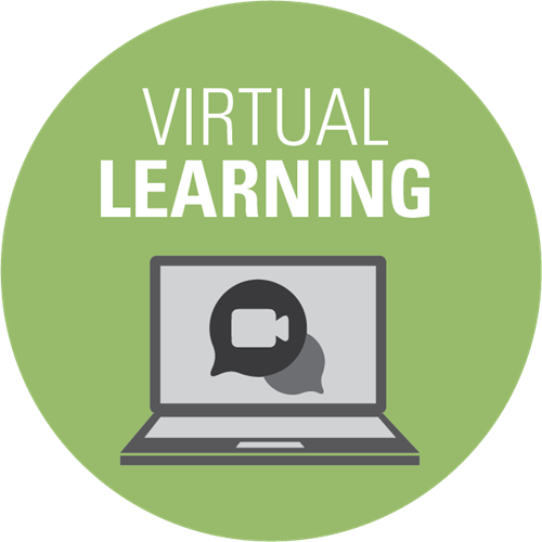 Virtual Academy 2021-2022 Featured Photo