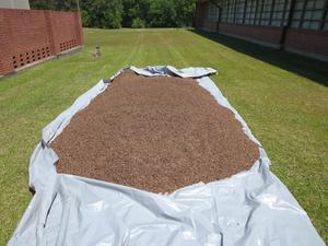 Garden Soil.JPG