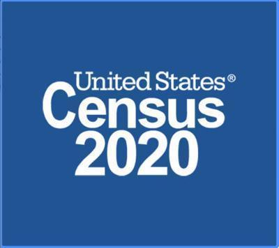2020 Census Thumbnail Image