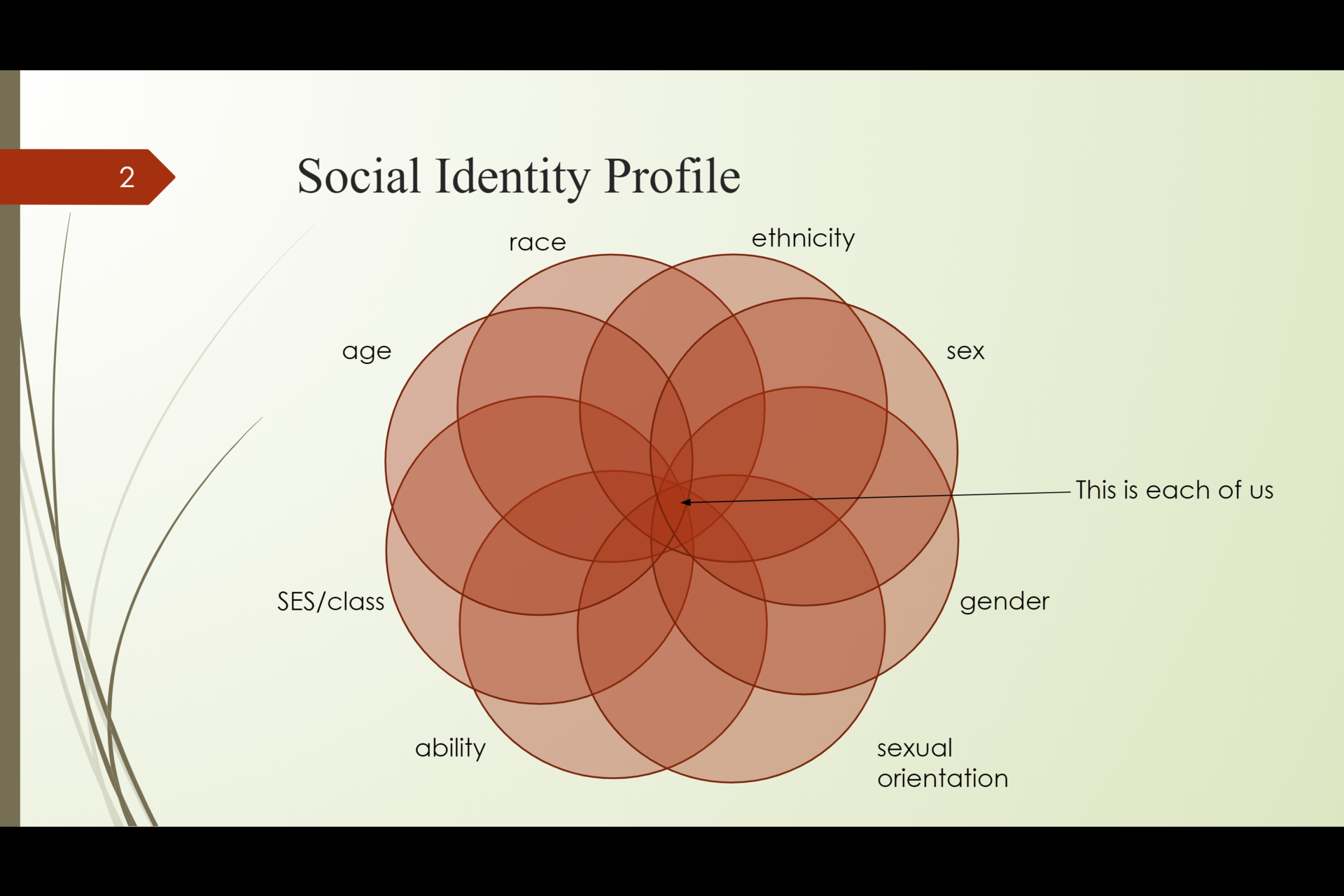 Social identity profile: all people have a 'social identity profile' that consists of different pieces of our identity (e.g., race, ethnicity, sex, gender, sexual orientation, ability, SES/class, age)