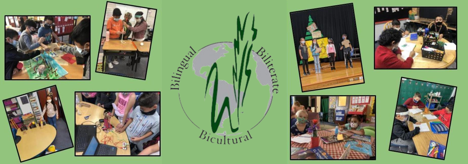 collage of elementary students busy learning on campus