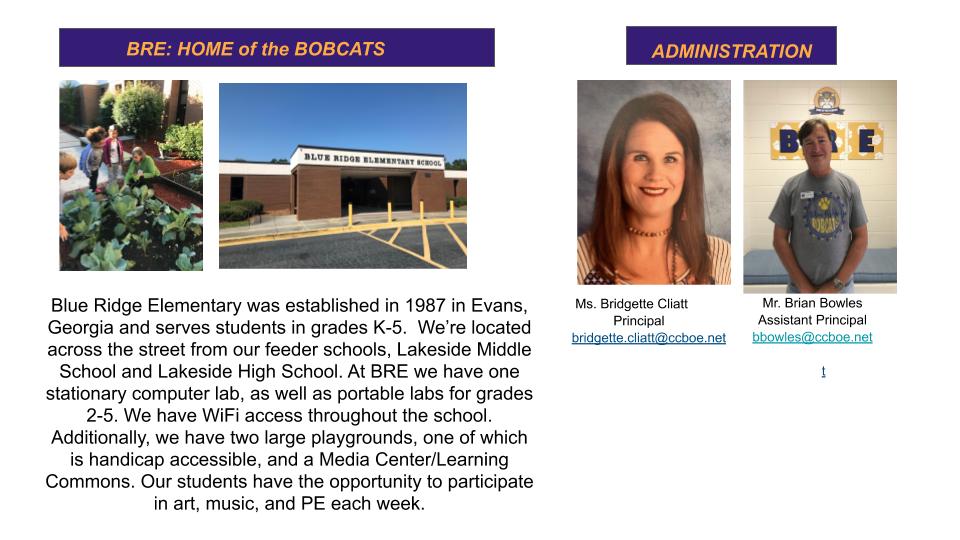 2019-2020 Blue Ridge Elementary School Profile