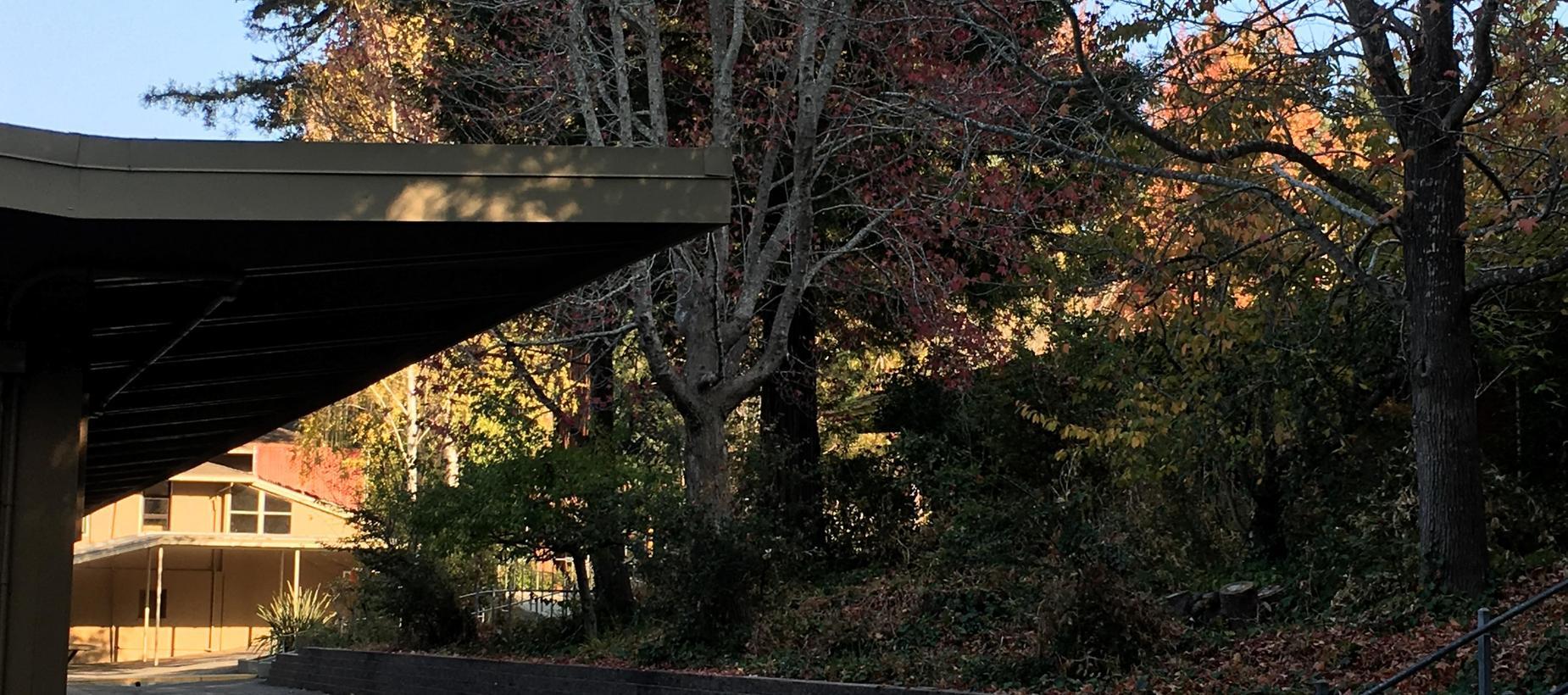 Photo of walkway at BCE