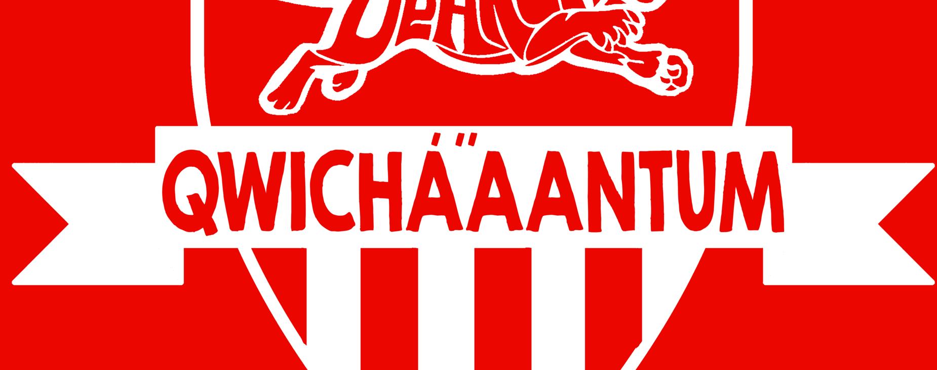 Qwichaaantum Logo