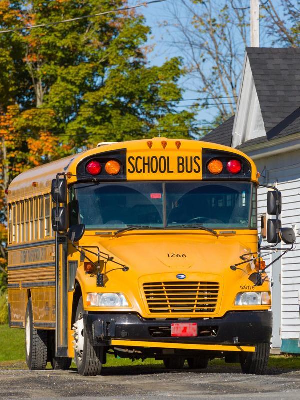 yellow-school-bus-1485361217vvY.jpg