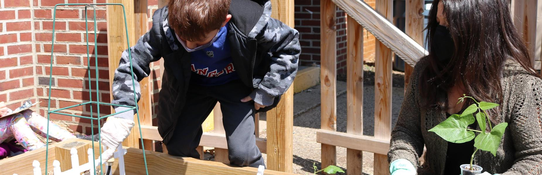 Photo of 1st grader and teacher tranplanting seeding in school garden.