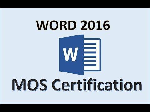 MS Word Cert logo