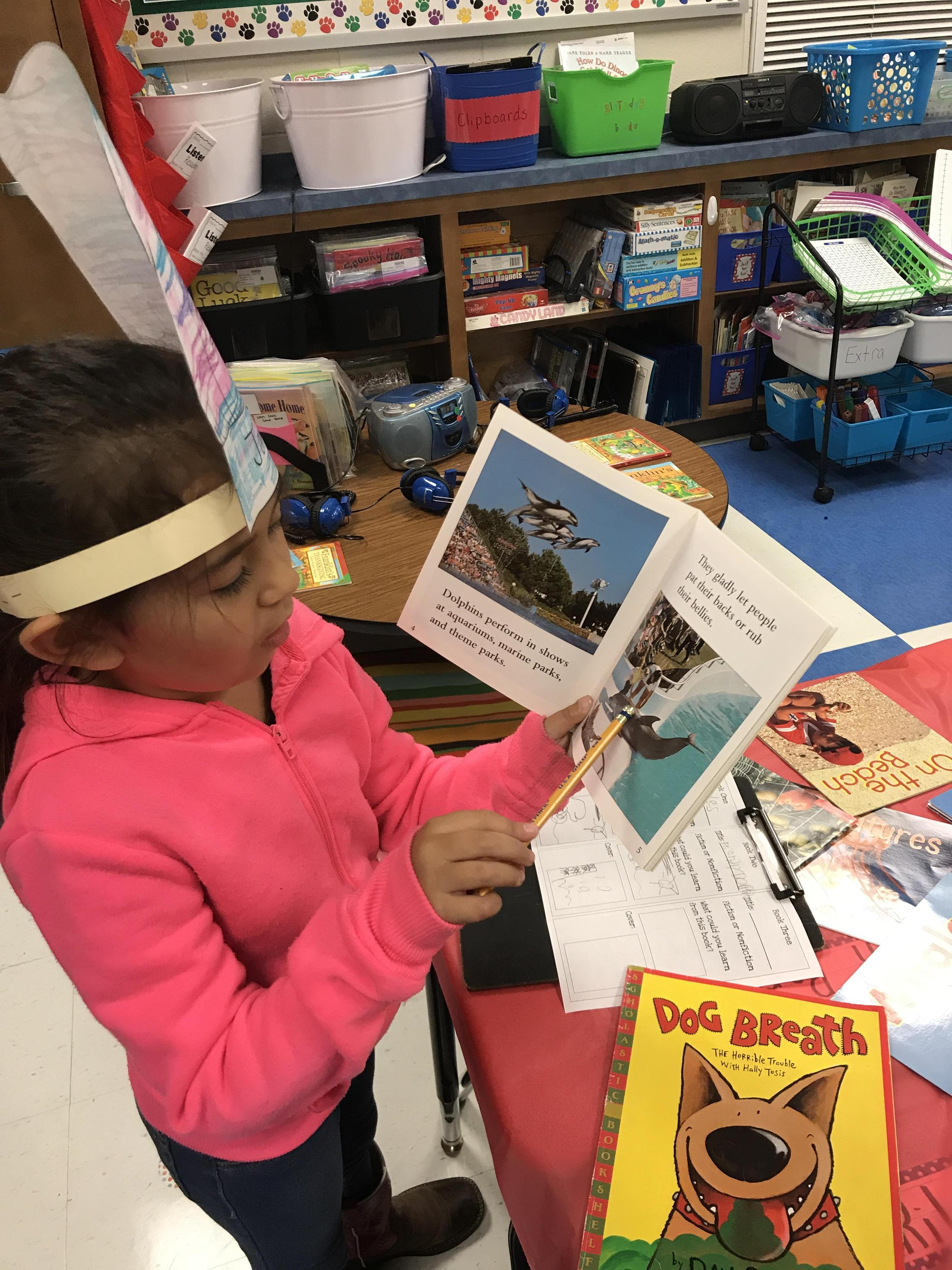 Student reading an informational text