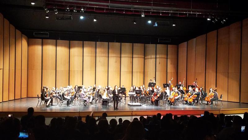 Southwest Idaho Middle School Honor Orchestra Thumbnail Image