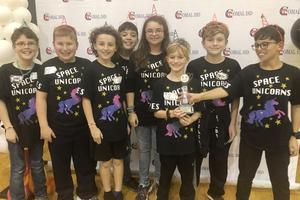 FLL TPES Team
