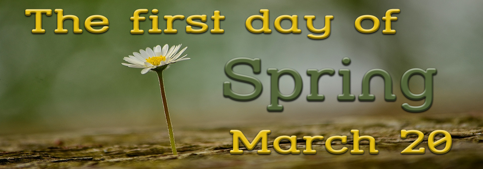 First Day of Spring Marc 20th