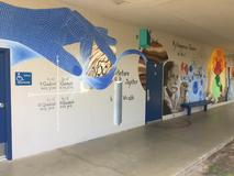 Room 12 Science Mural