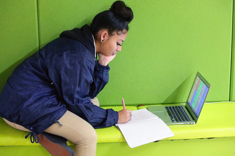 Scholar Studying