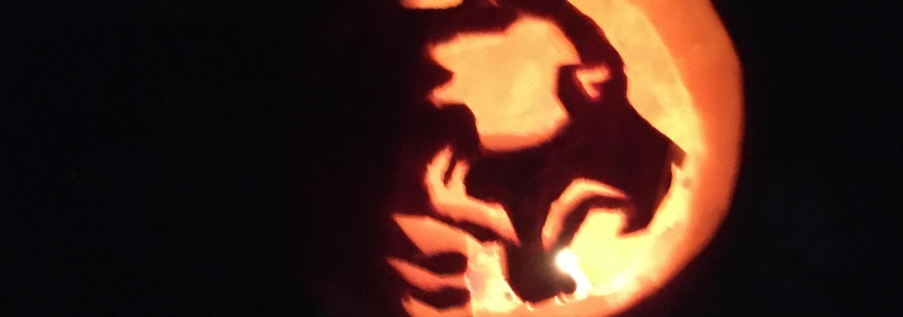 Bruin logo carved into a pumpkin.