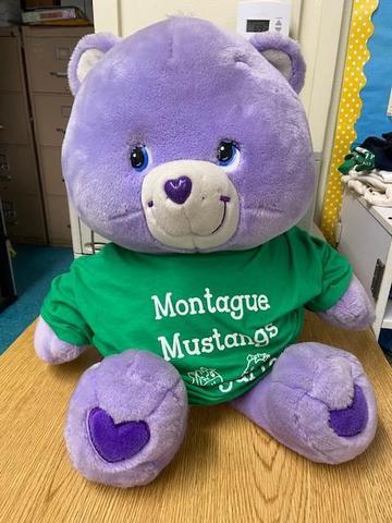 Teddy Bear Featured Photo