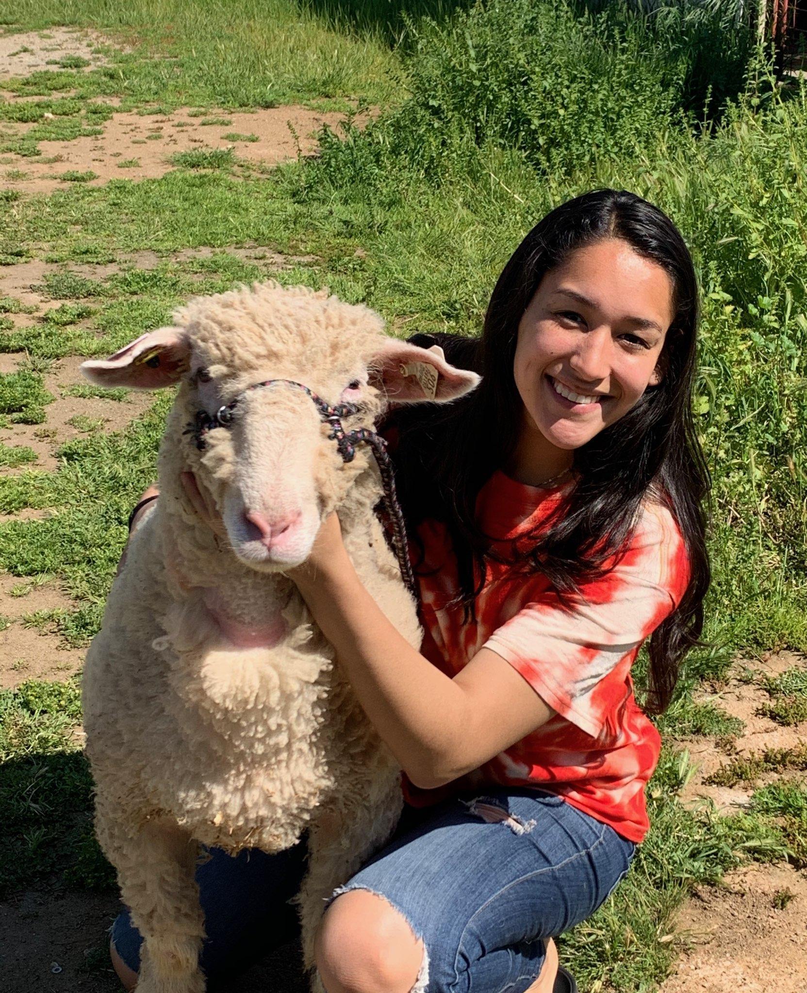 Senior Evelyn Lara with her 2020 Porterville Fair Lamb