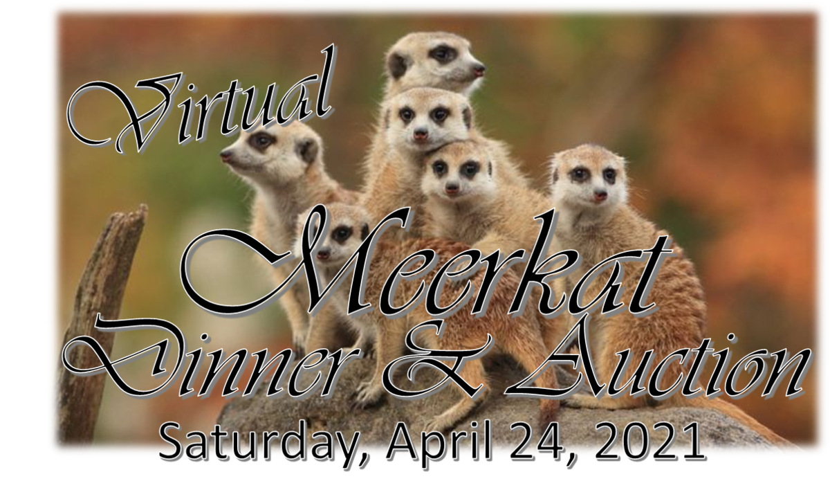 MLA Meerkat Dinner & Auction event