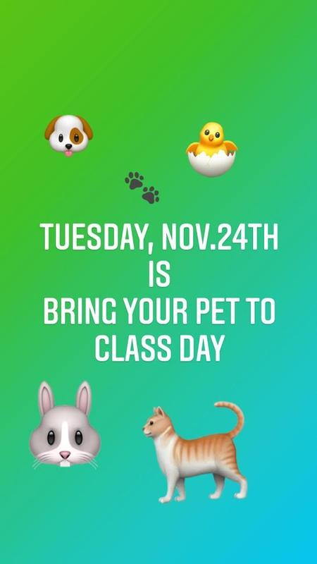bring your pet to class.JPG