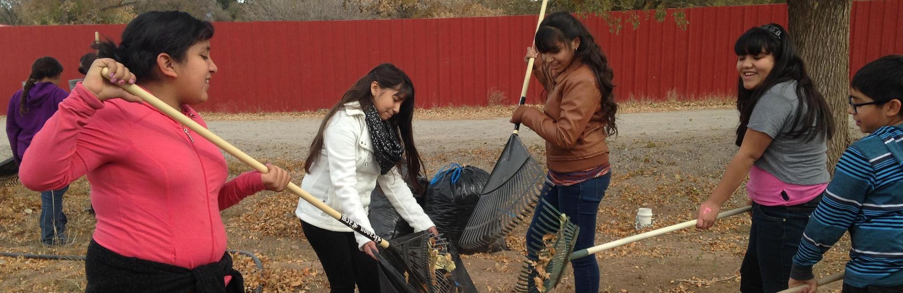 SVA students raking leaves