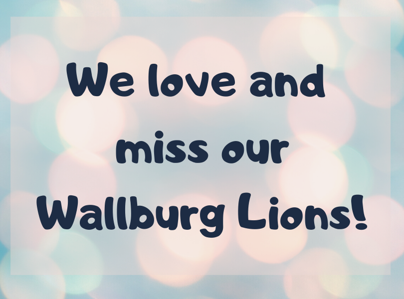 Miss Our Lions