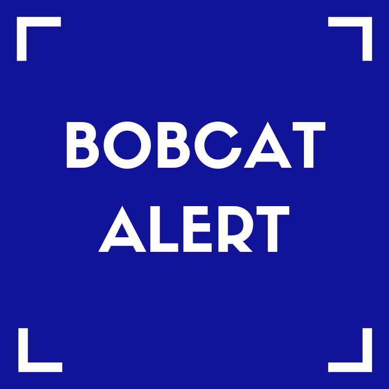 Bobcat Alert Featured Photo